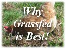 Why Grass-fed is Best!